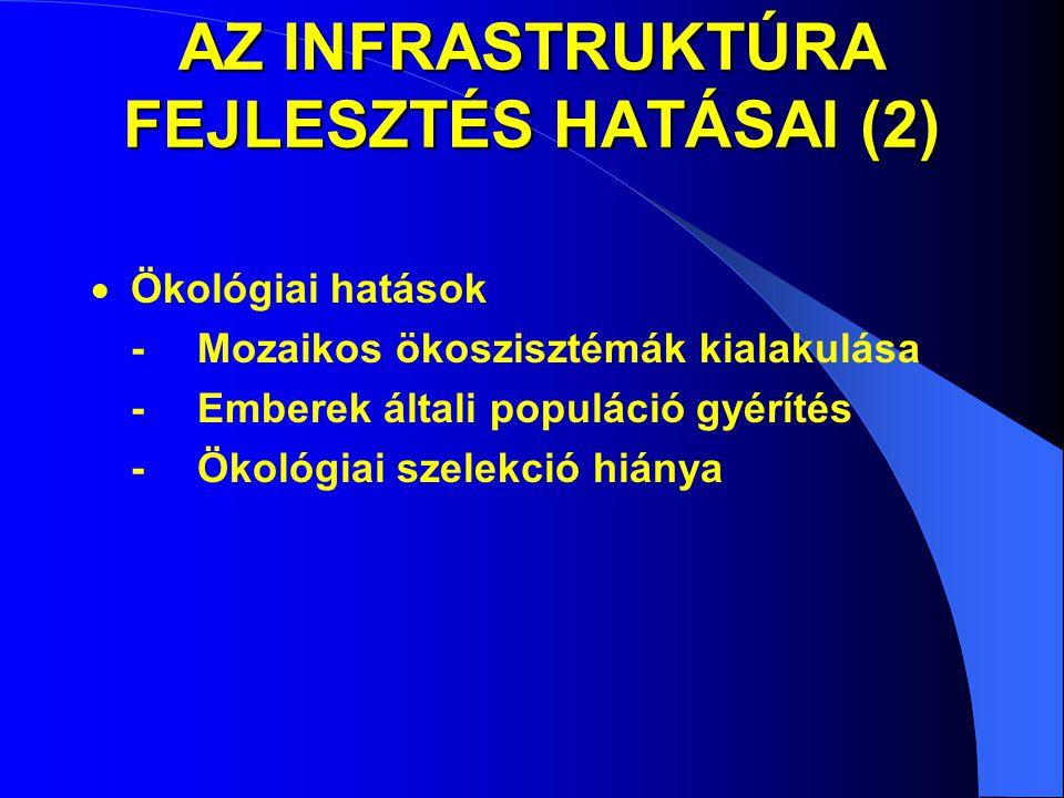 AZ INFRASTRUKTÚRA FEJLESZTÉS HATÁSAI (2)