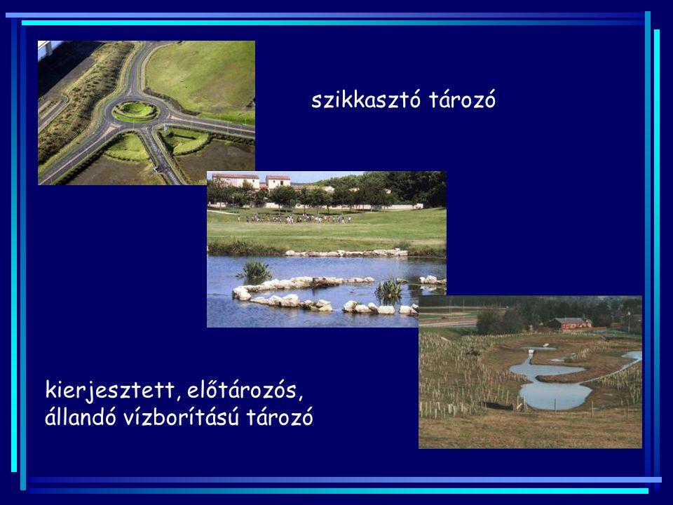 szikkasztó tározó kierjesztett, előtározós, állandó vízborítású tározó