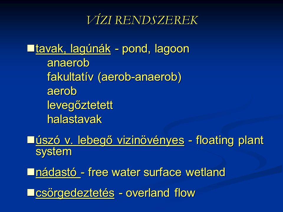 VÍZI RENDSZEREK tavak, lagúnák - pond, lagoon anaerob