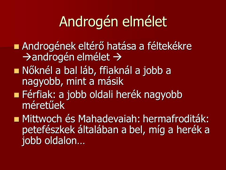 Androgén elmélet Androgének eltérő hatása a féltekékre androgén elmélet  Nőknél a bal láb, ffiaknál a jobb a nagyobb, mint a másik.