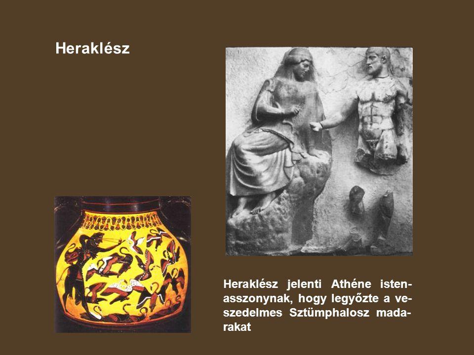 Heraklész Heraklész jelenti Athéne isten-asszonynak, hogy legyőzte a ve-szedelmes Sztümphalosz mada-rakat.