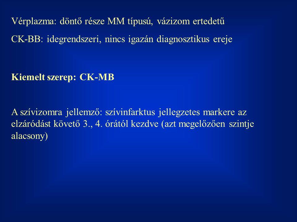 Vérplazma: döntő része MM típusú, vázizom ertedetű