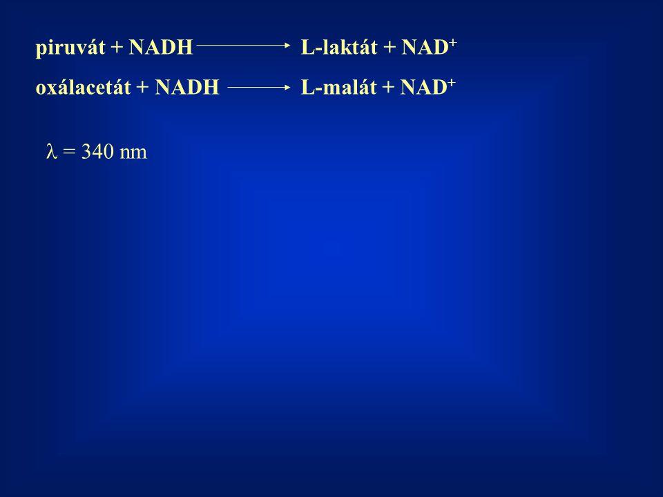 piruvát + NADH L-laktát + NAD+