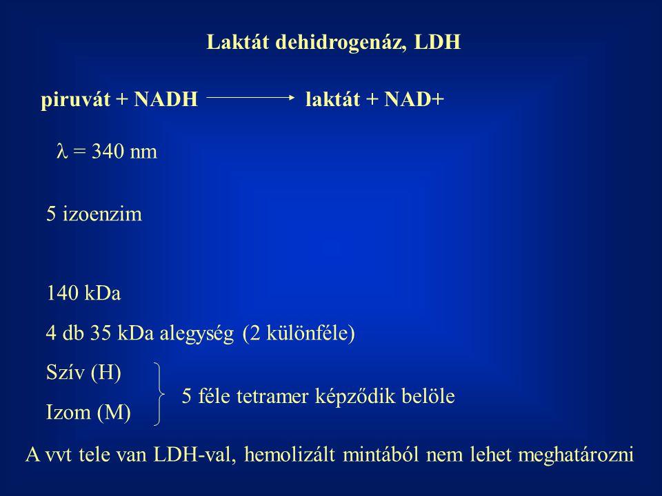 Laktát dehidrogenáz, LDH