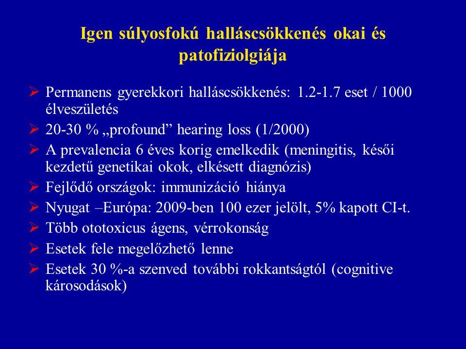 Igen súlyosfokú halláscsökkenés okai és patofiziolgiája