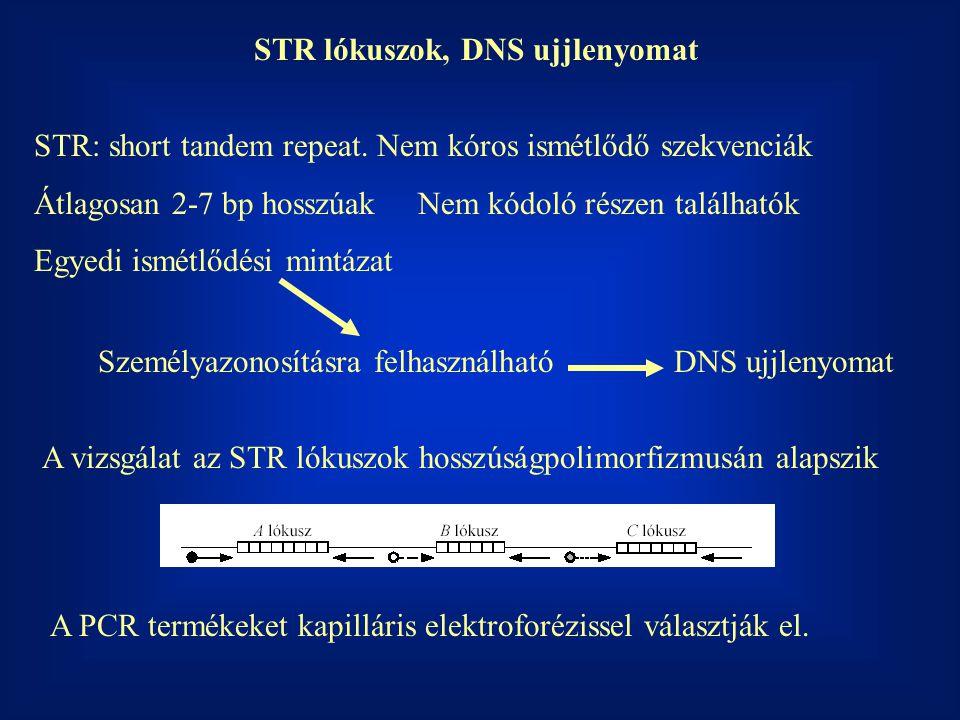 STR lókuszok, DNS ujjlenyomat