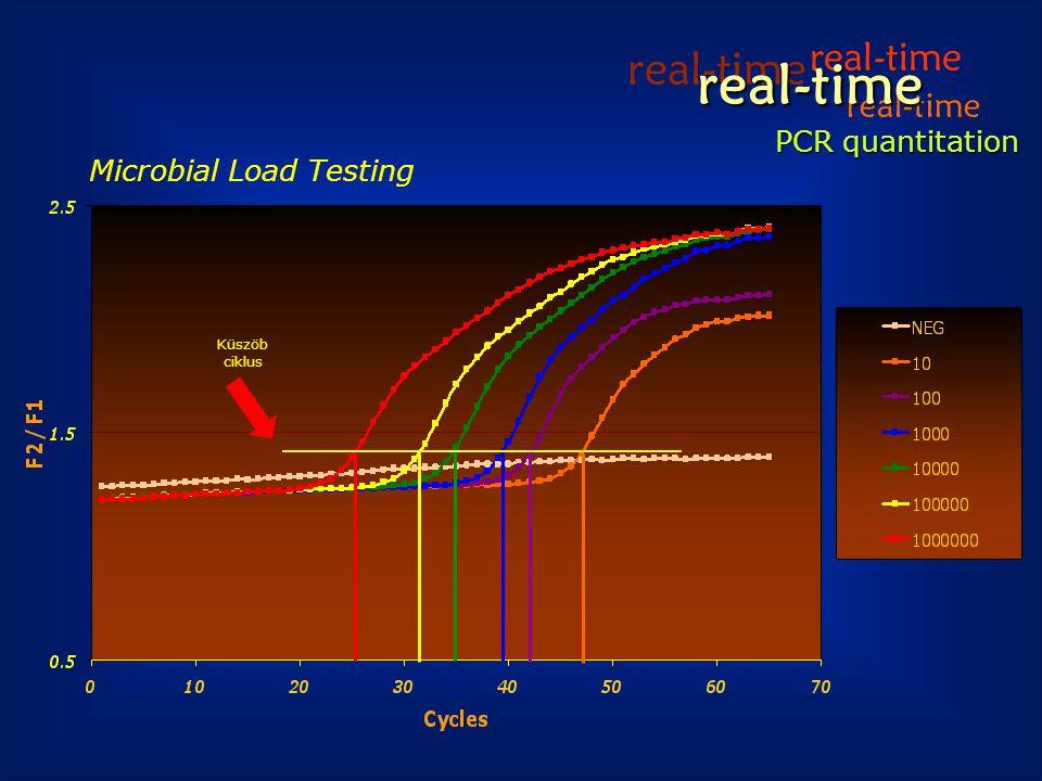 real-time real-time real-time real-time PCR quantitation