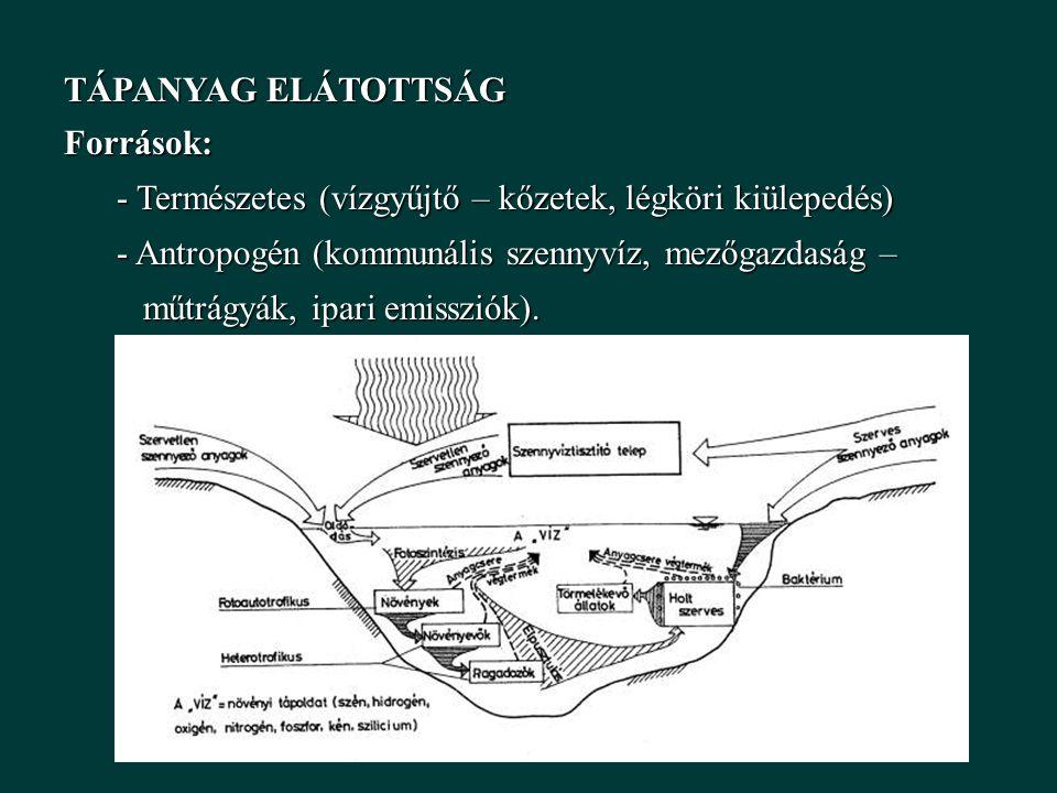TÁPANYAG ELÁTOTTSÁG Források: - Természetes (vízgyűjtő – kőzetek, légköri kiülepedés) - Antropogén (kommunális szennyvíz, mezőgazdaság –