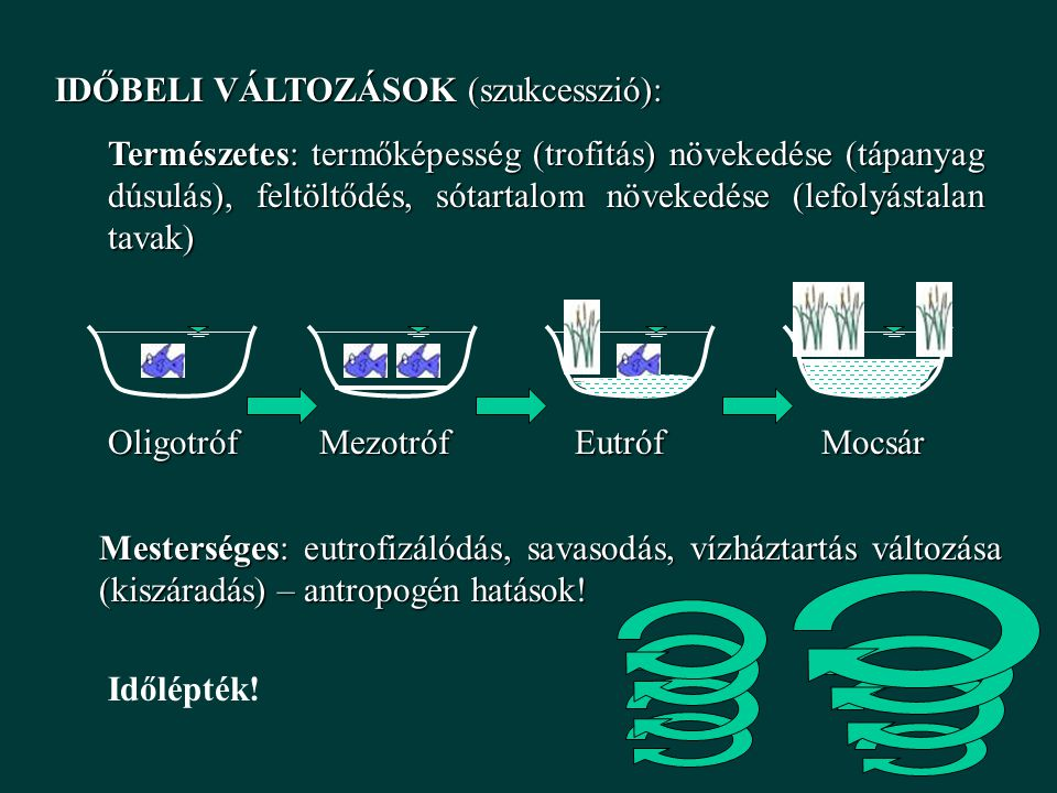 IDŐBELI VÁLTOZÁSOK (szukcesszió):