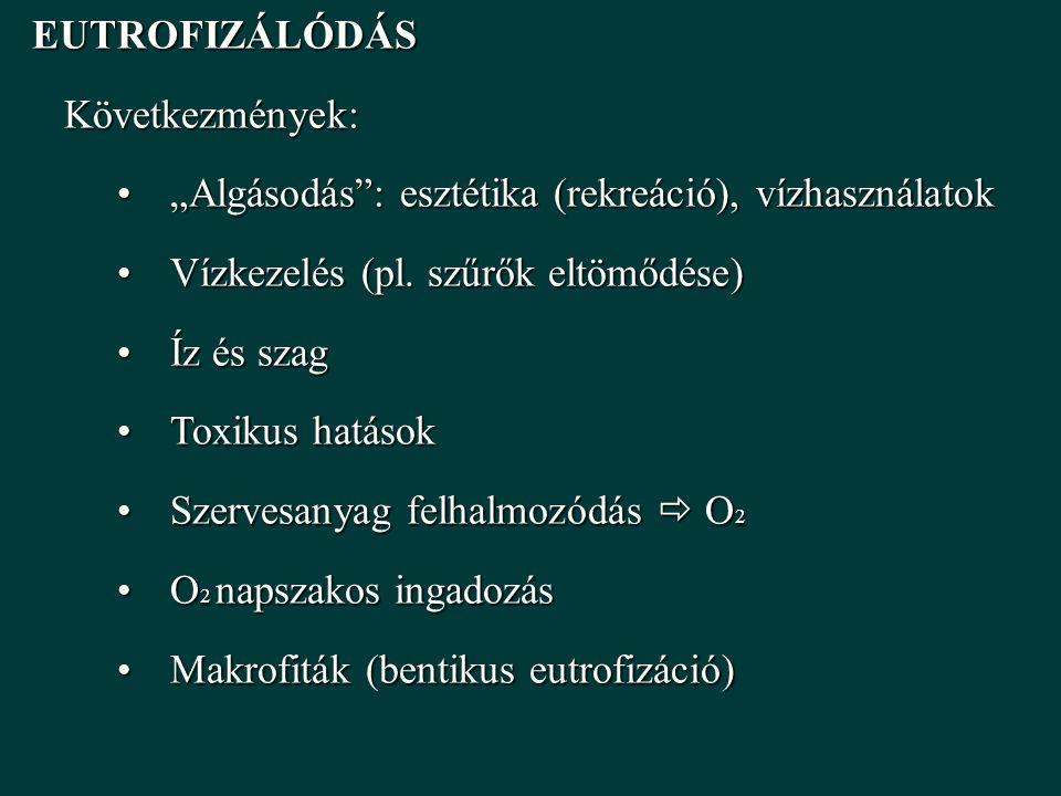 """EUTROFIZÁLÓDÁS Következmények: """"Algásodás : esztétika (rekreáció), vízhasználatok. Vízkezelés (pl. szűrők eltömődése)"""