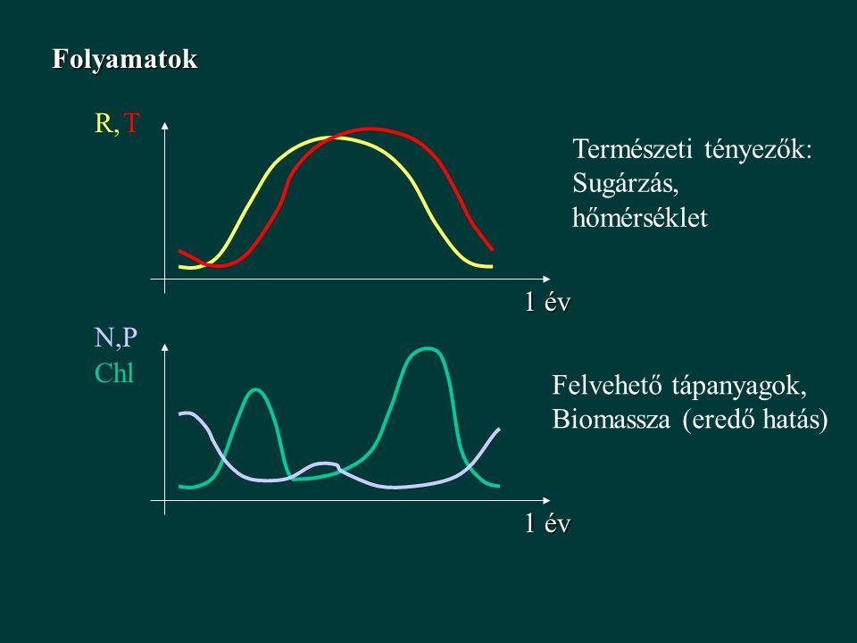 Folyamatok R, T. 1 év. Természeti tényezők: Sugárzás, hőmérséklet. N,P. 1 év. Chl. Felvehető tápanyagok,