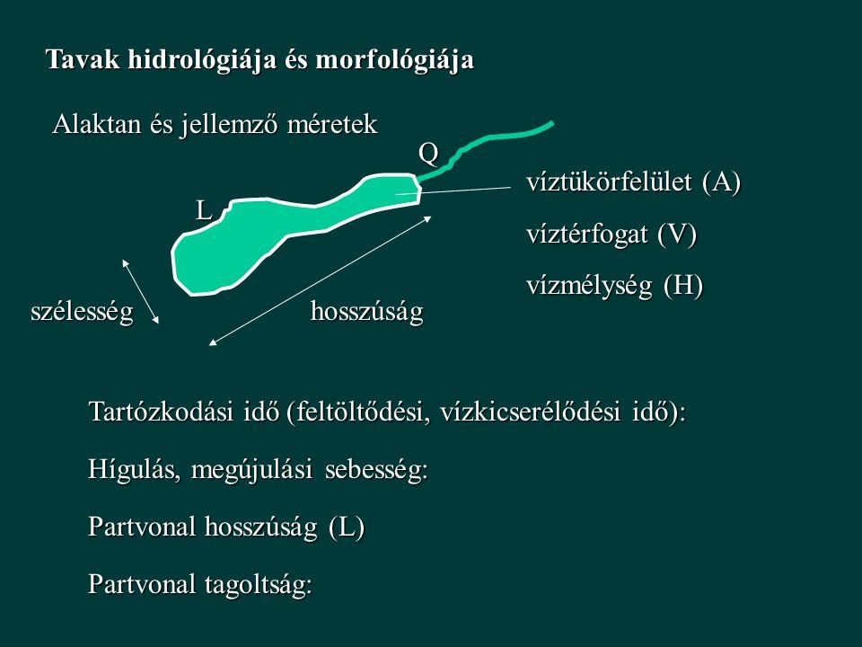Tavak hidrológiája és morfológiája