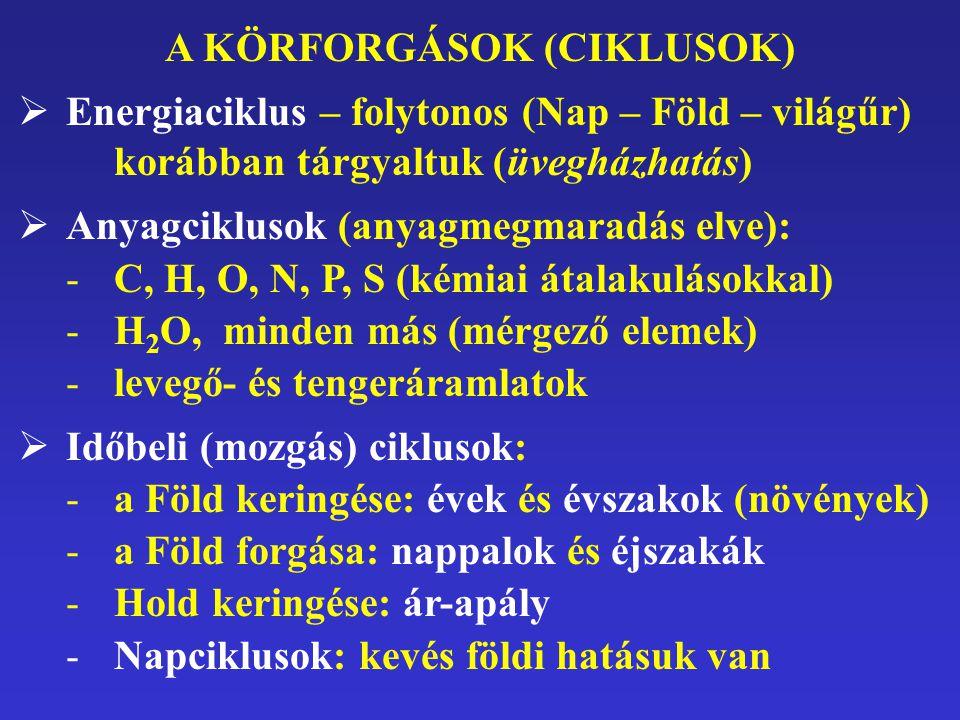 A KÖRFORGÁSOK (CIKLUSOK)