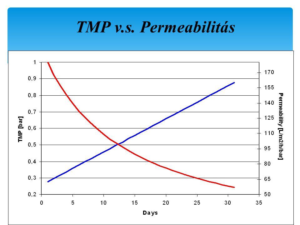 TMP v.s. Permeabilitás