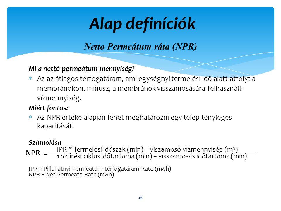 Alap definíciók Netto Permeátum ráta (NPR)