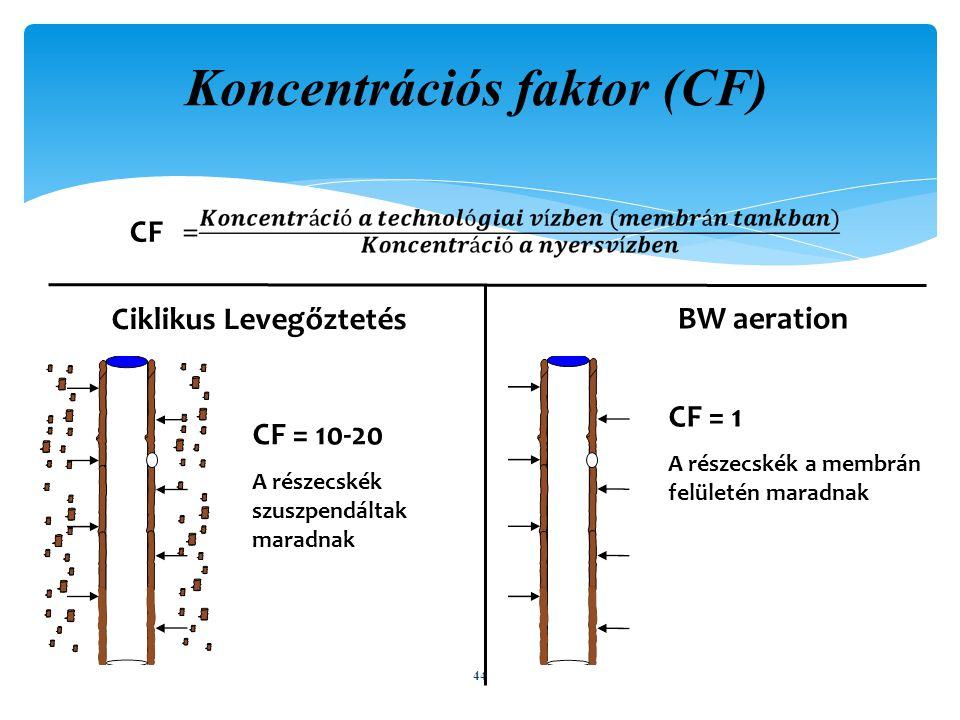 Koncentrációs faktor (CF)