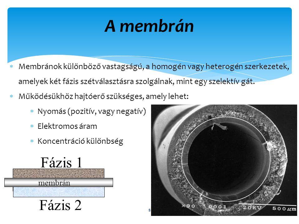 A membrán Membránok különböző vastagságú, a homogén vagy heterogén szerkezetek, amelyek két fázis szétválasztásra szolgálnak, mint egy szelektív gát.