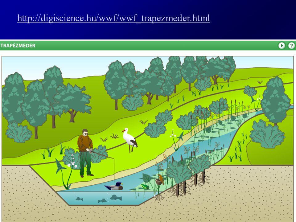 http://digiscience.hu/wwf/wwf_trapezmeder.html