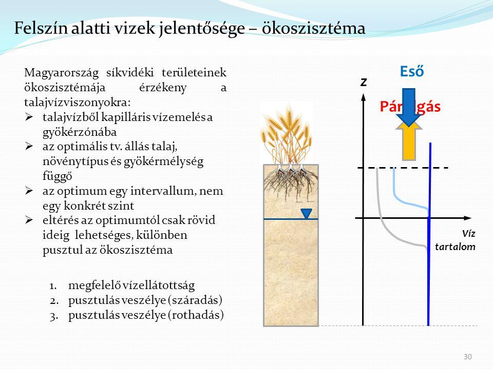 Felszín alatti vizek jelentősége – ökoszisztéma