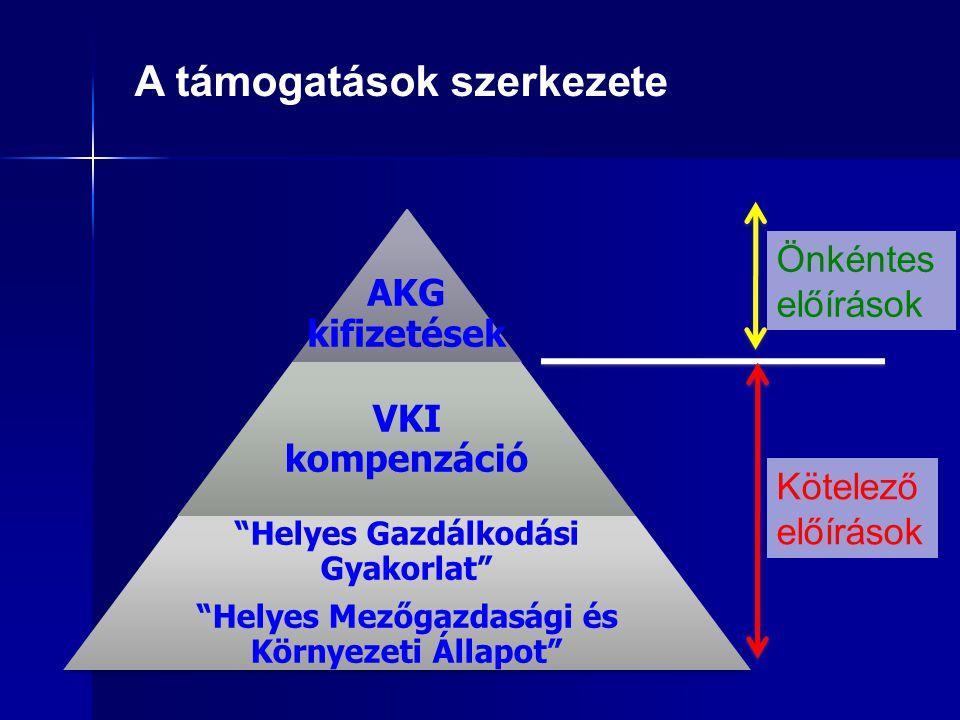 A támogatások szerkezete