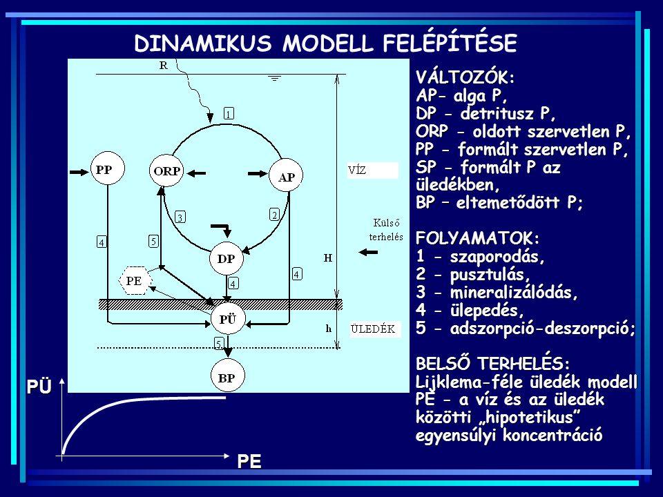 DINAMIKUS MODELL FELÉPÍTÉSE
