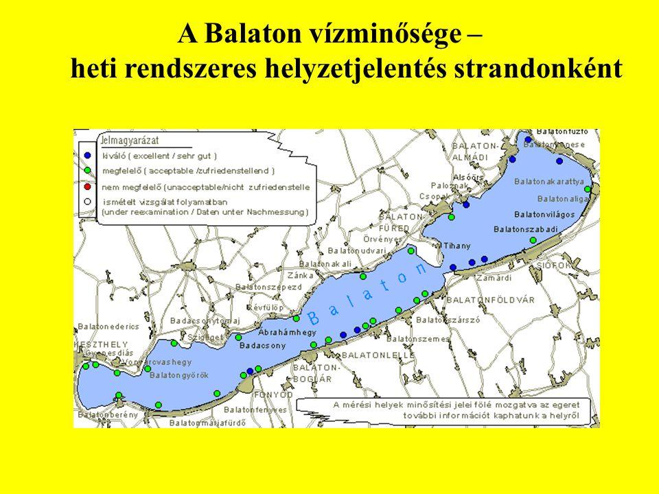 A Balaton vízminősége – heti rendszeres helyzetjelentés strandonként