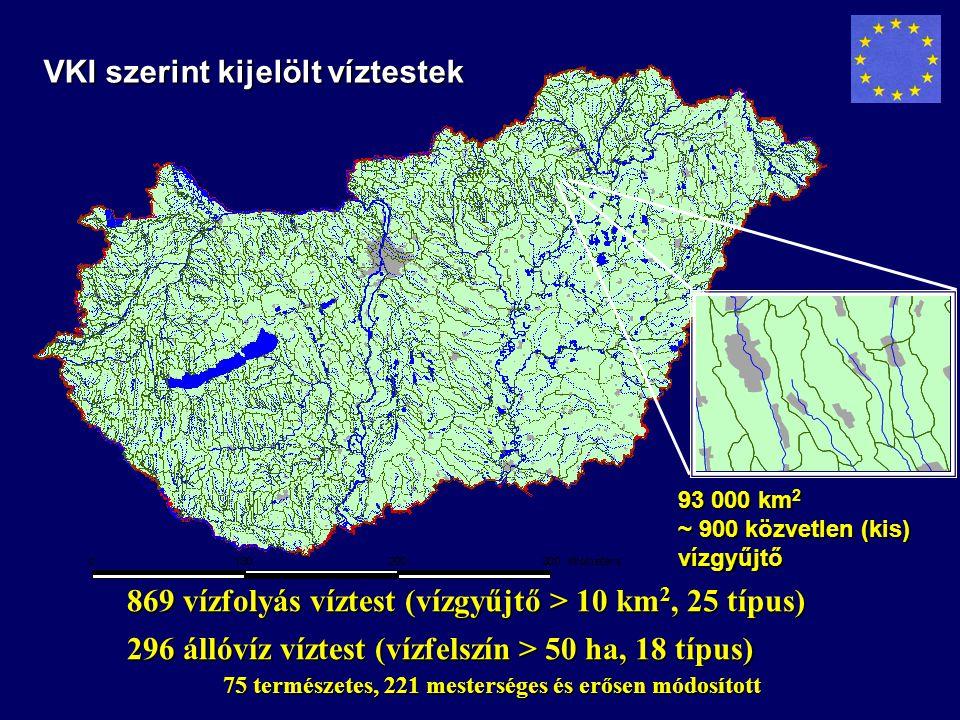 VKI szerint kijelölt víztestek