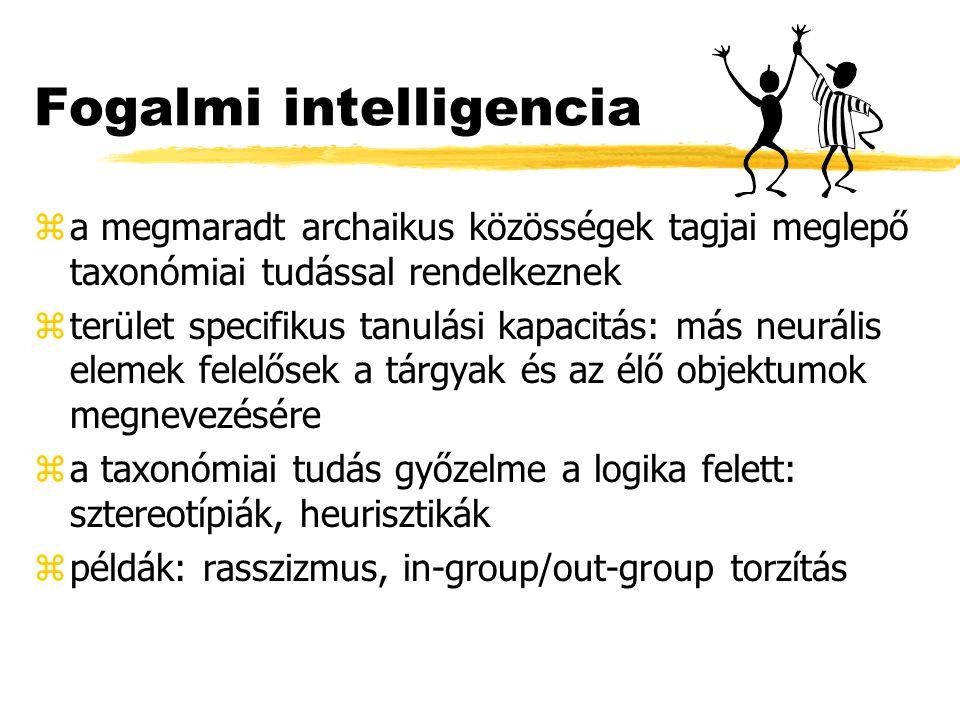 Fogalmi intelligencia