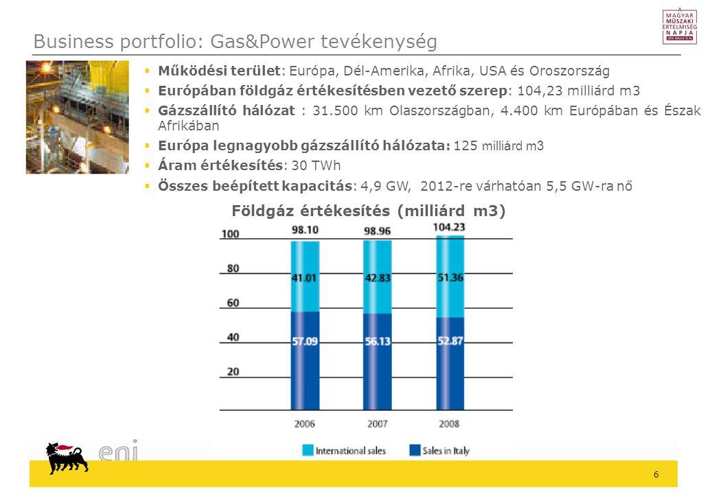 Business portfolio: Gas&Power tevékenység