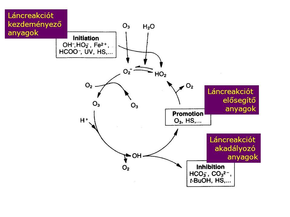 Láncreakciót kezdeményező anyagok Láncreakciót elősegítő anyagok Láncreakciót akadályozó anyagok