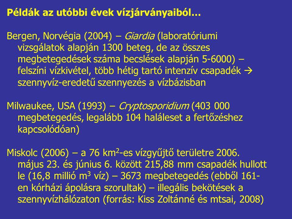 Példák az utóbbi évek vízjárványaiból…