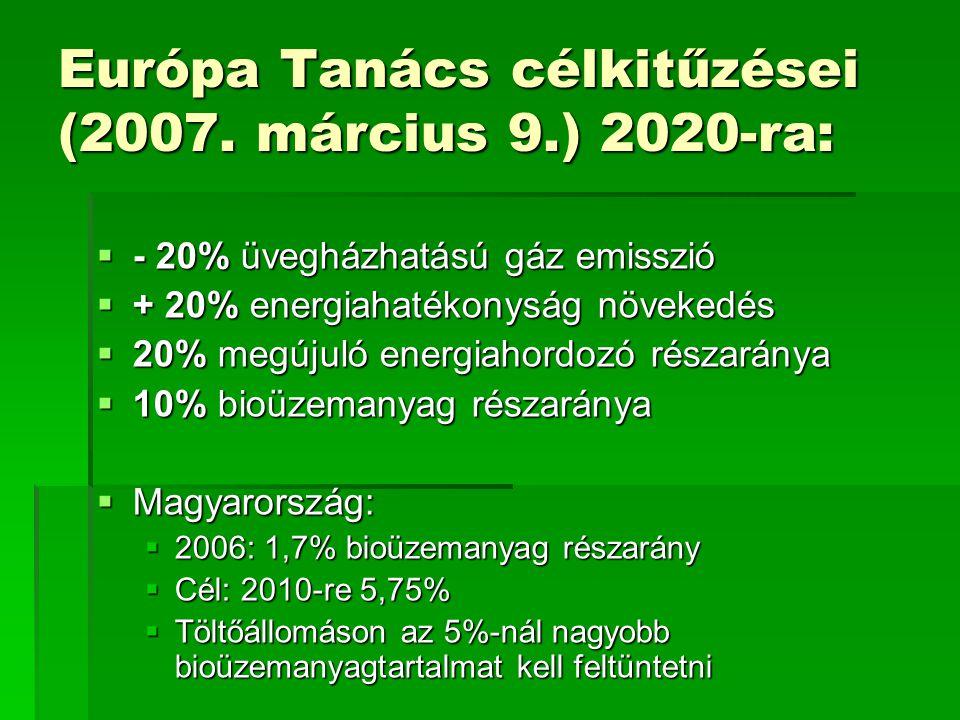 Európa Tanács célkitűzései (2007. március 9.) 2020-ra: