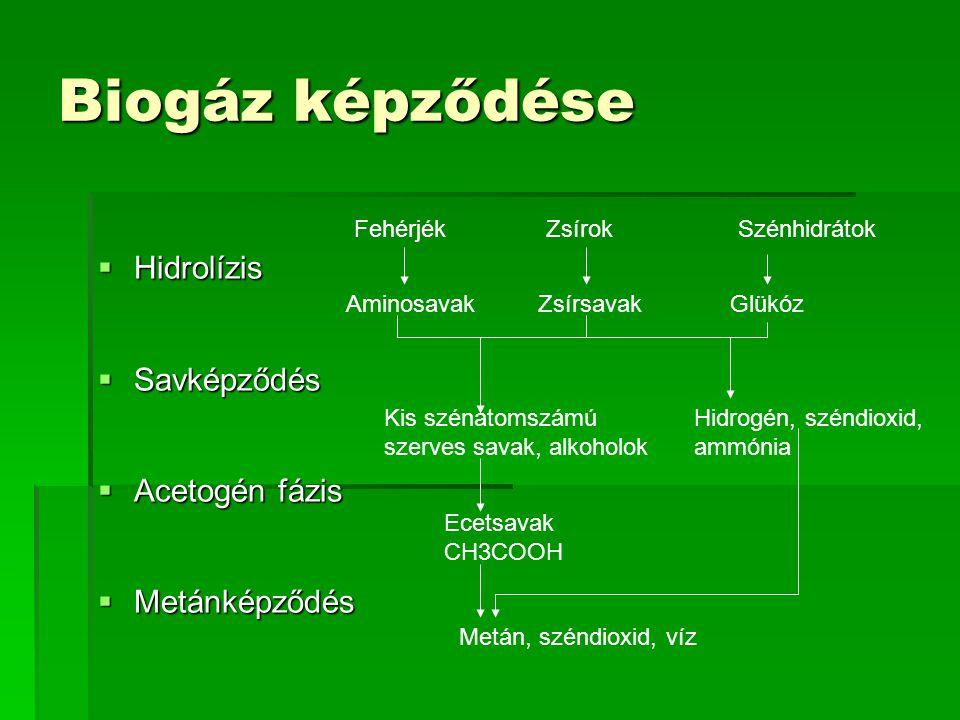 Biogáz képződése Hidrolízis Savképződés Acetogén fázis Metánképződés