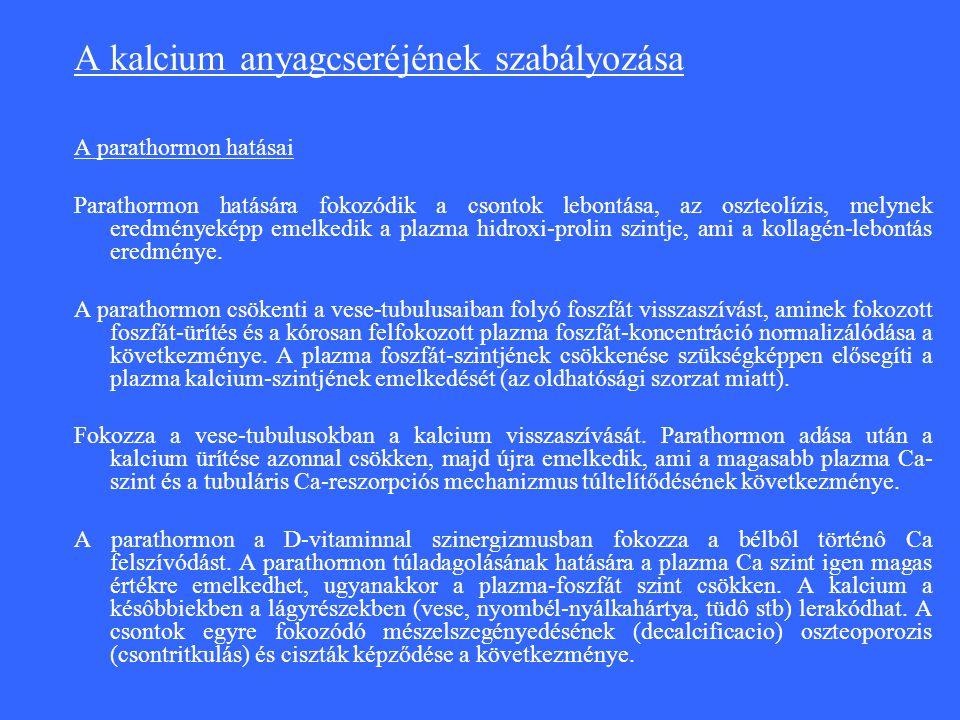 A kalcium anyagcseréjének szabályozása