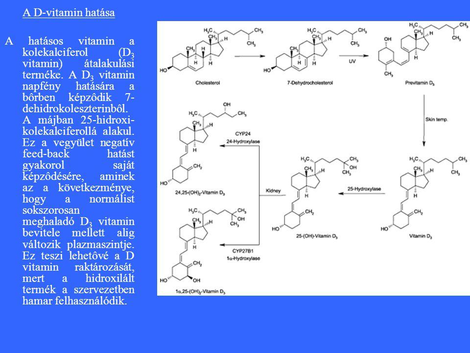A D-vitamin hatása