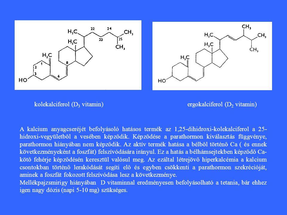 kolekalciferol (D3 vitamin) ergokalciferol (D2 vitamin)