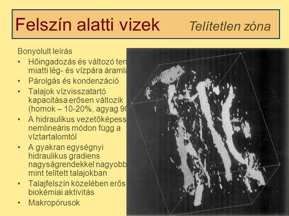 Felszín alatti vizek Telítetlen zóna Víztartalom profil