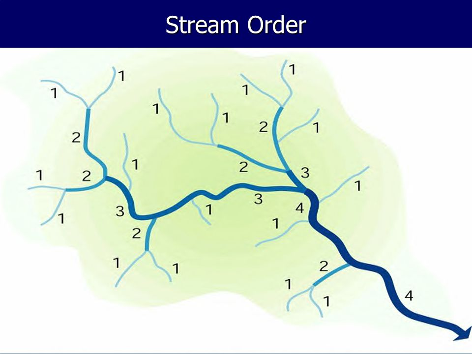 Stream Order Stream ordering is a method of classifying the hierarchy of streams in a watershed….