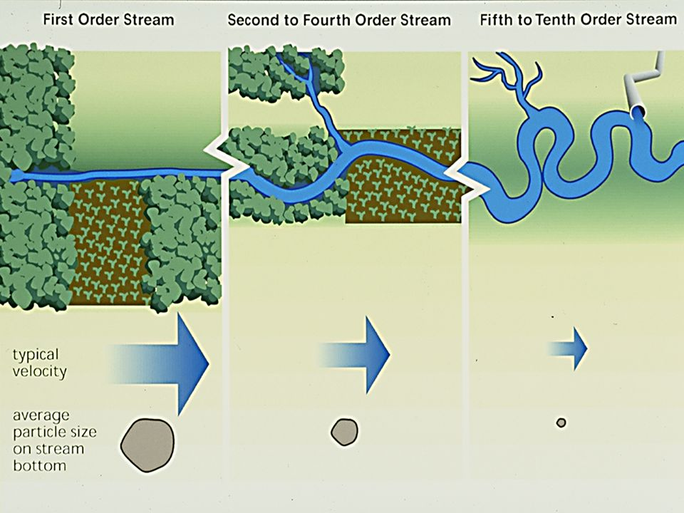 Runoff can vary from a watershed, either due to natural causes or land use practices……