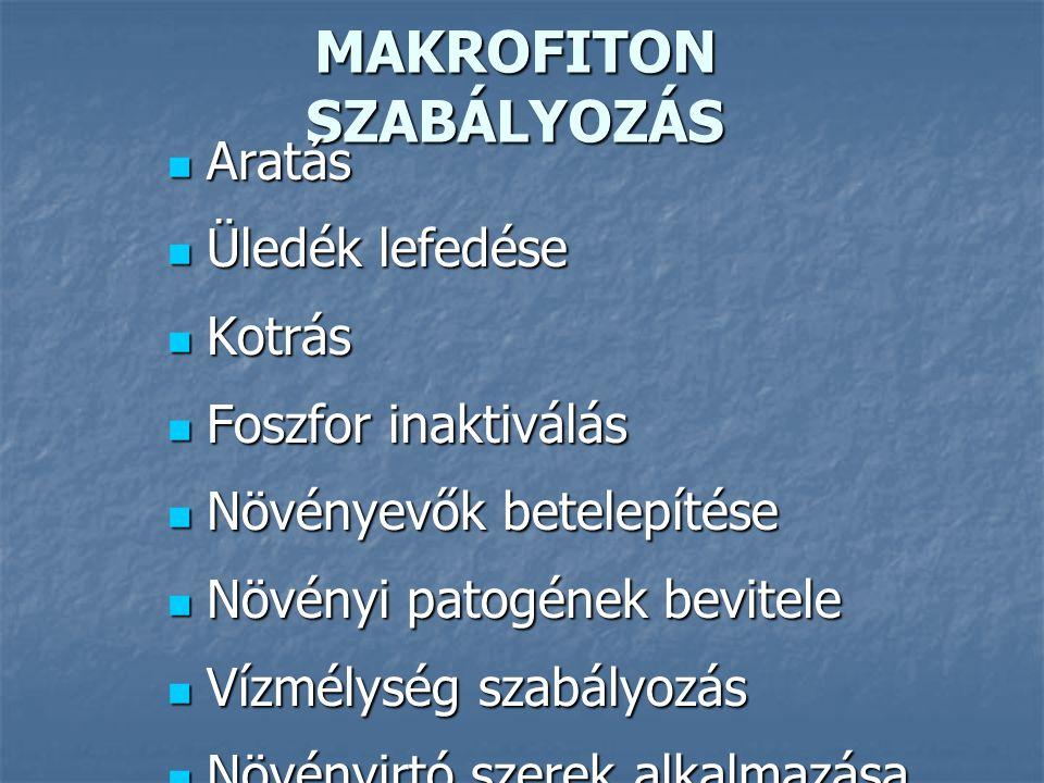 MAKROFITON SZABÁLYOZÁS