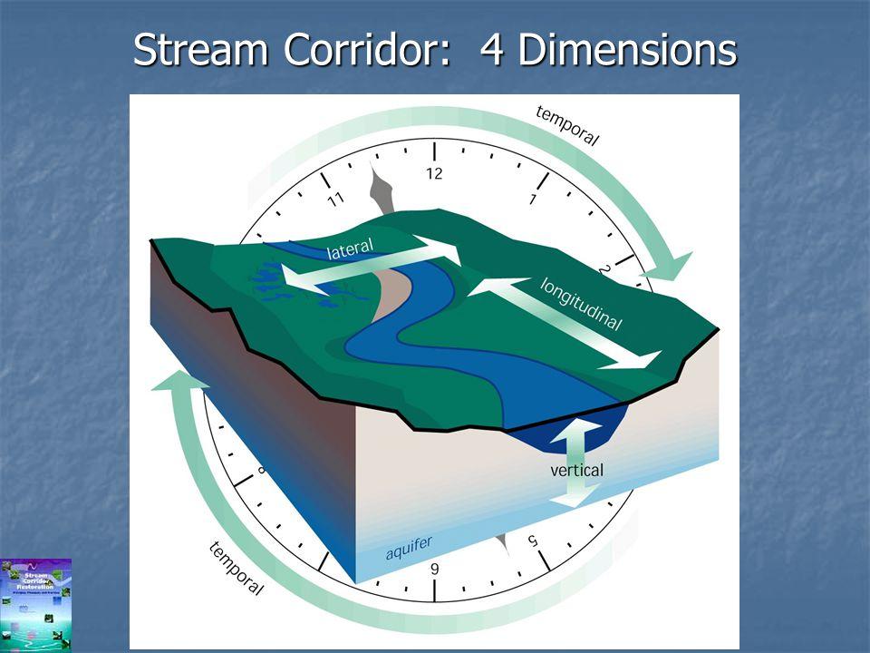 Stream Corridor: 4 Dimensions