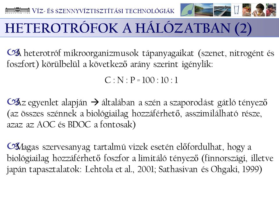 HETEROTRÓFOK A HÁLÓZATBAN (2)