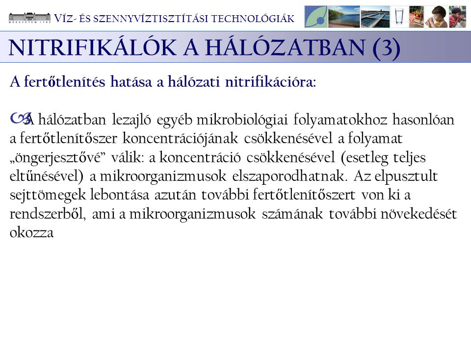 NITRIFIKÁLÓK A HÁLÓZATBAN (3)