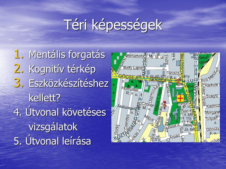 Téri képességek Mentális forgatás Kognitív térkép Eszközkészítéshez