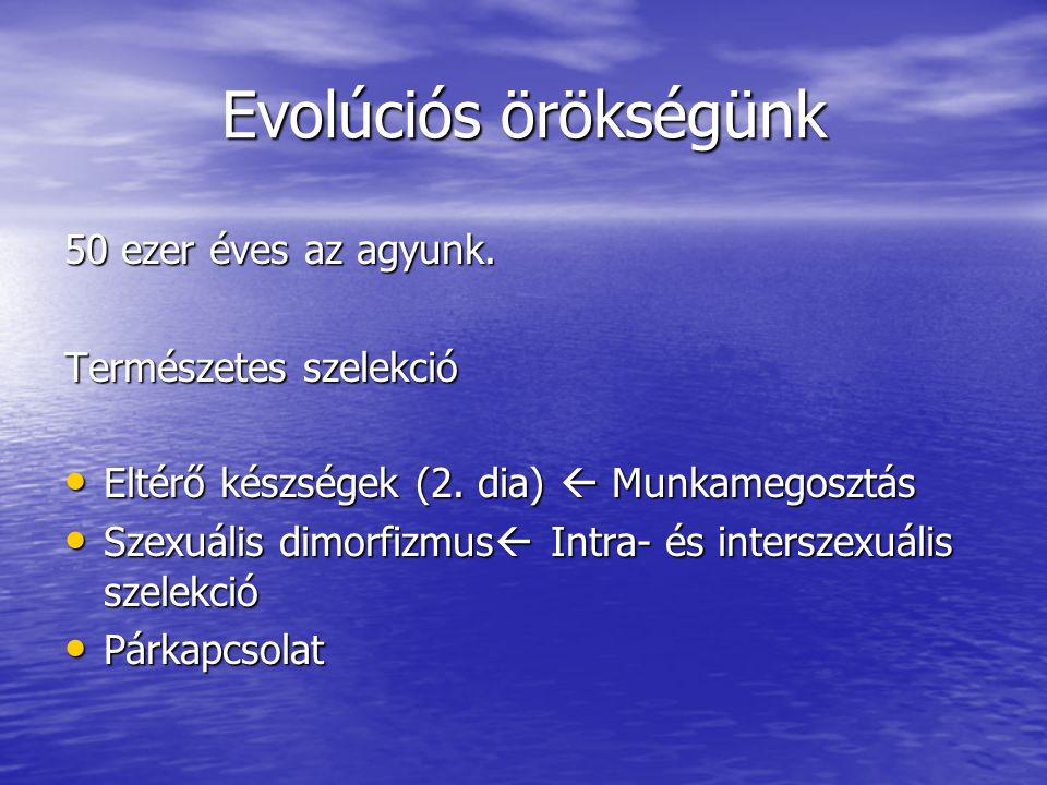 Evolúciós örökségünk 50 ezer éves az agyunk. Természetes szelekció