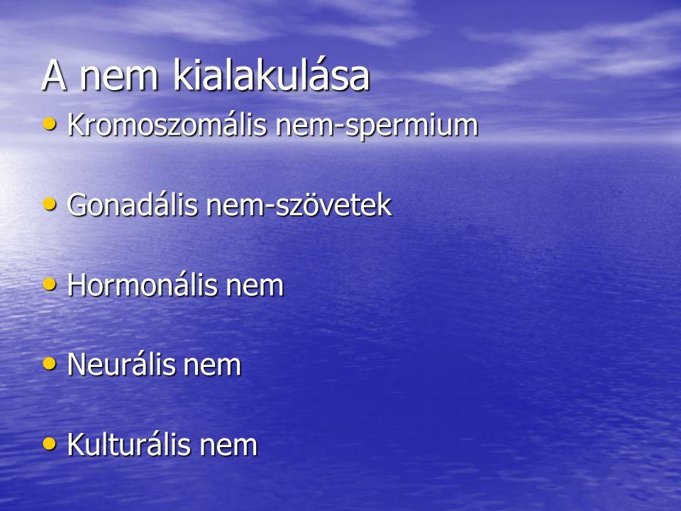 A nem kialakulása Kromoszomális nem-spermium Gonadális nem-szövetek