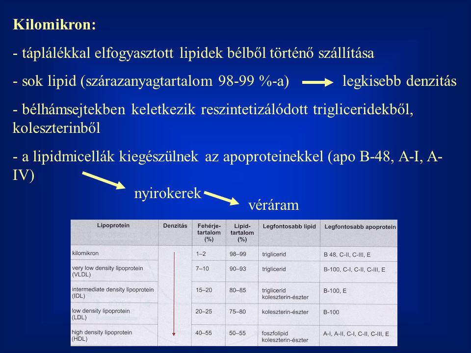 Kilomikron: táplálékkal elfogyasztott lipidek bélből történő szállítása. sok lipid (szárazanyagtartalom 98-99 %-a) legkisebb denzitás.