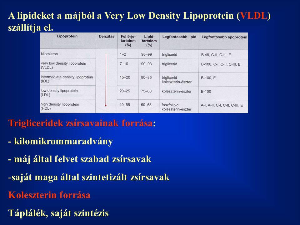 A lipideket a májból a Very Low Density Lipoprotein (VLDL) szállítja el.