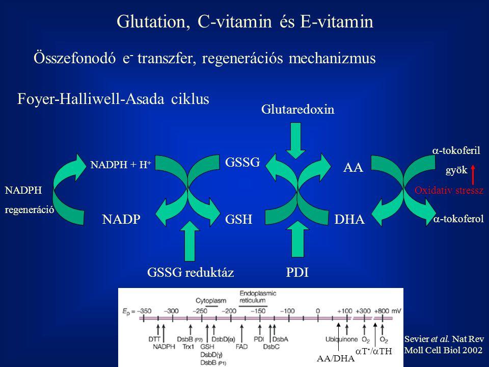 Glutation, C-vitamin és E-vitamin