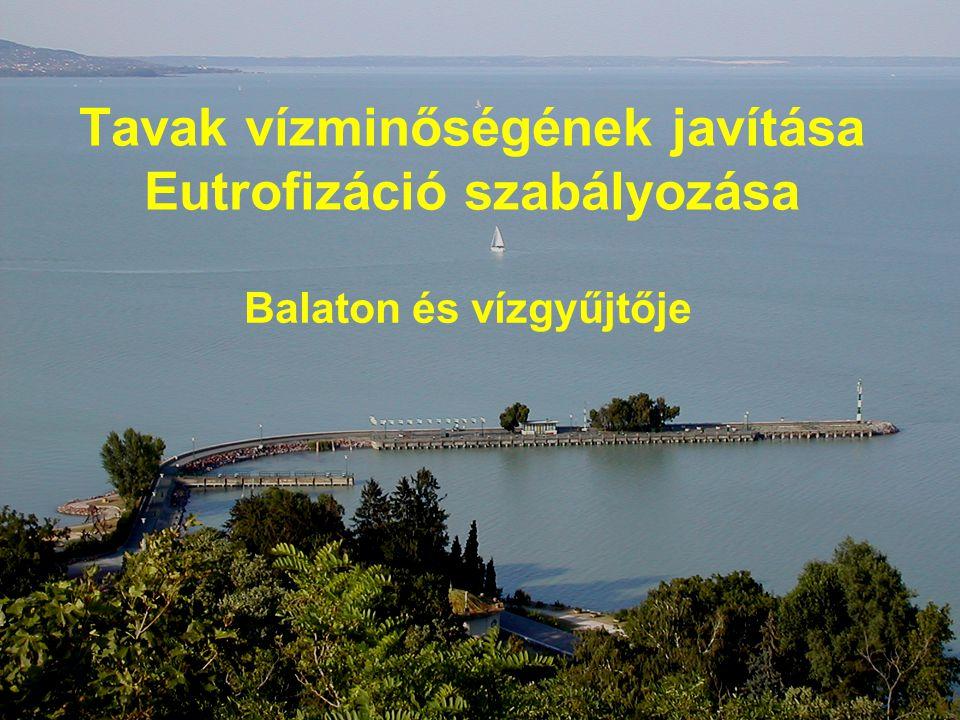 Tavak vízminőségének javítása Eutrofizáció szabályozása